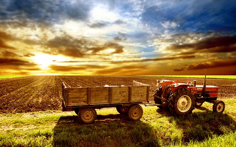 Farm and Ranch Insurance in ND
