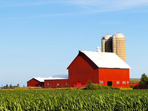 Agriculture Insurance in Valley City, ND