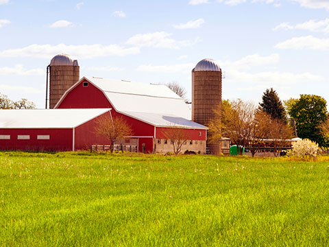 Farm Insurance in Jamestown