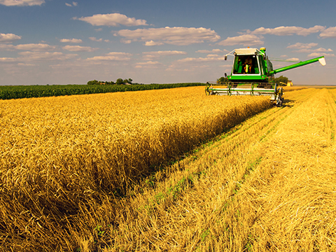 Ranch Insurance and Farm Insurance in Grand Forks, ND